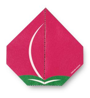 画像2: cochae「売切御免 完売必至 cochaeの折り紙ポストカード 3種セット」