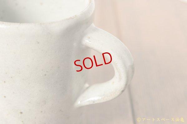 画像3: 寺村光輔 林檎灰釉 マグカップ小