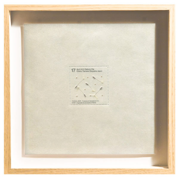 画像1: 太田三郎「Seed Project アカミタンポポ、ナズナ」(額付き)