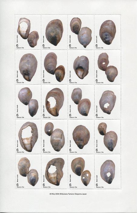 画像1: 太田三郎「On the Beach」より「Beach shells 」B(額付き)