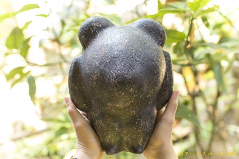 画像1: 大澤哲哉 黒い熊