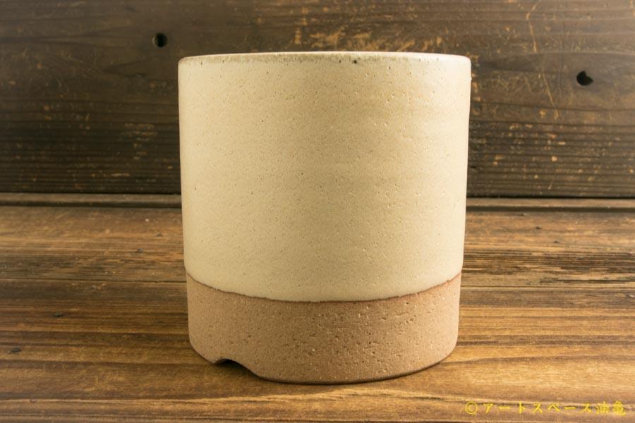 画像2: 長谷川哲也「植木鉢4号 白」