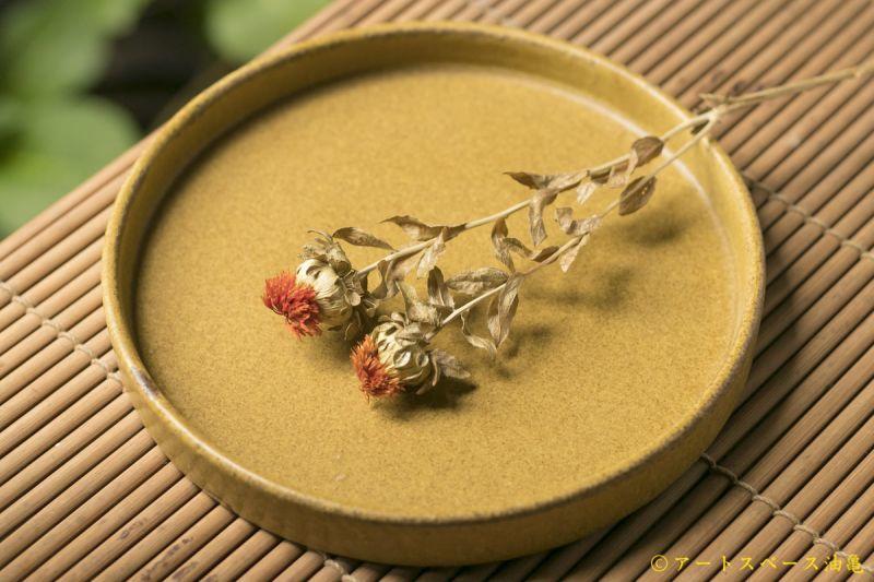 画像1: 長谷川哲也 切り立ち皿 21cm 芥子