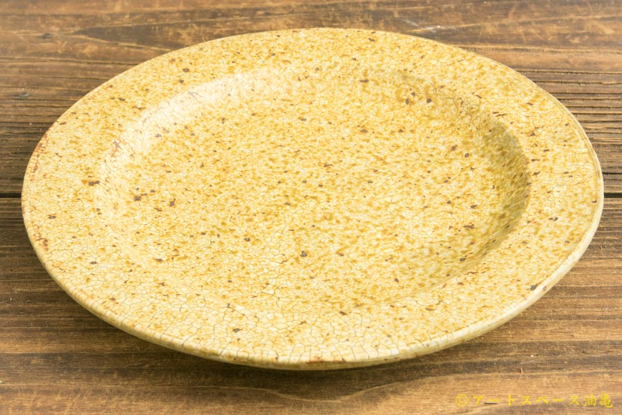 画像2: 馬渡新平「ヒビ粉引 リム皿6.5寸」