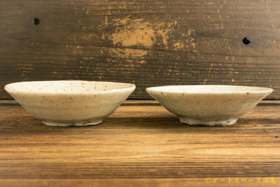 画像2: 馬渡新平「フルーツ灰刷毛目皿 5寸」