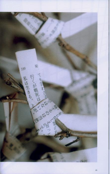 画像3: 太田三郎 特別アーカイブ「出石町の家」記録集 初回限定特典つき