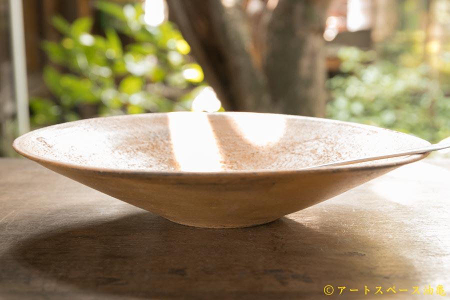画像2: 大澤哲哉 カレー皿 黃