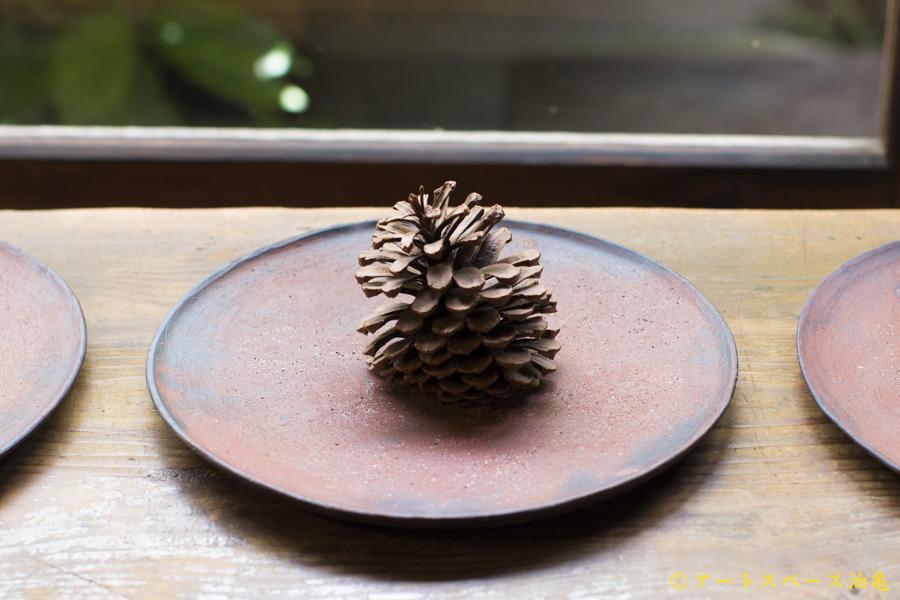 画像1: 大澤哲哉 Flat plate M 赤【アソート作品】