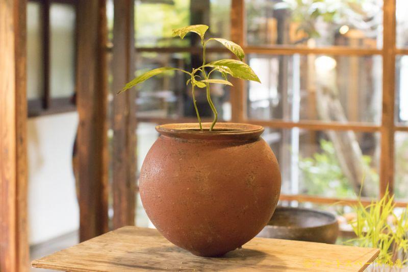 画像1: 大澤哲哉 Vase 赤