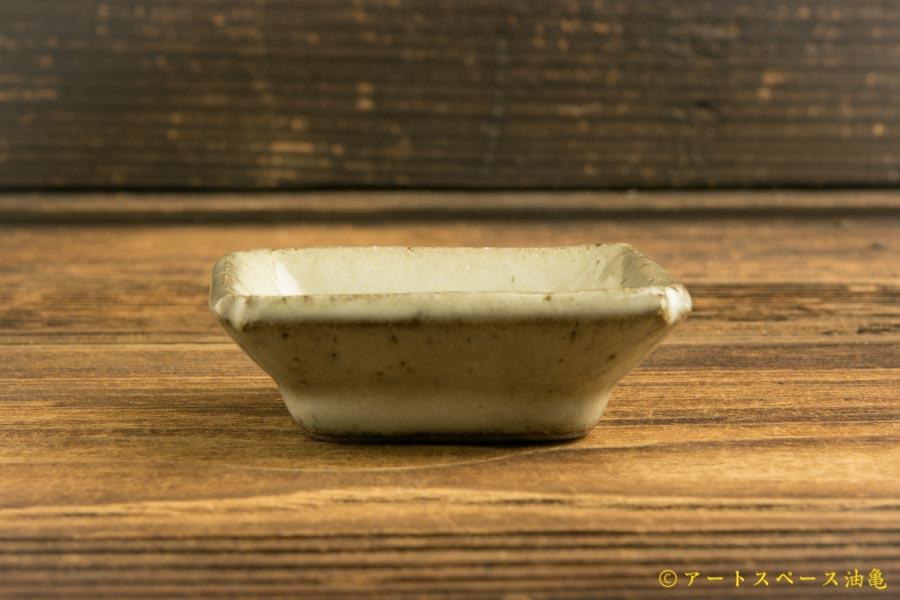 画像3: 寺村光輔「林檎灰釉 隅入小皿」