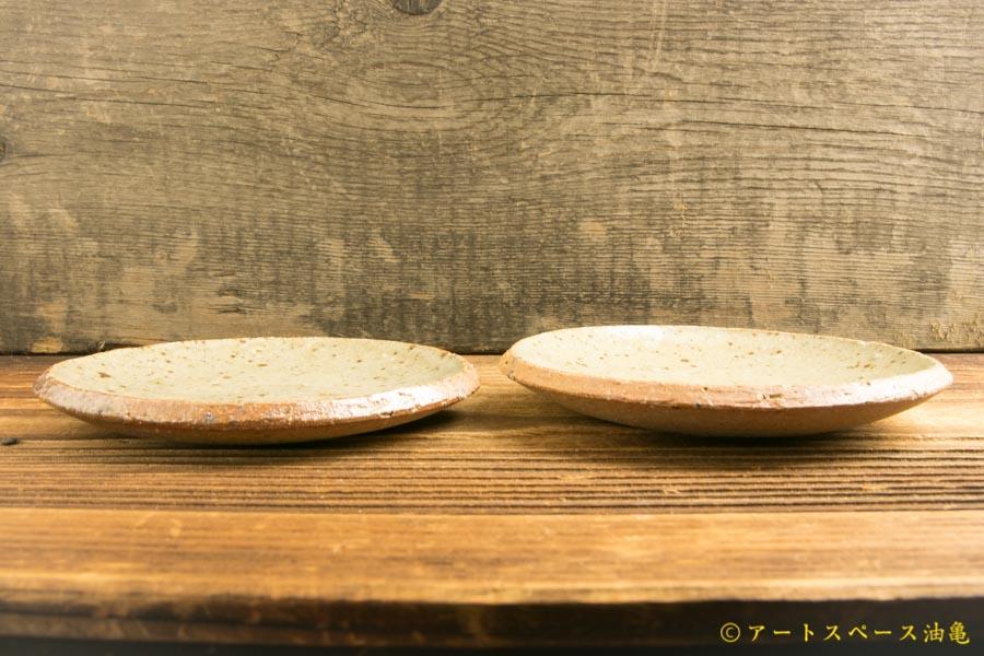 画像2: 寺村光輔「並白釉 4寸丸皿(薪)」