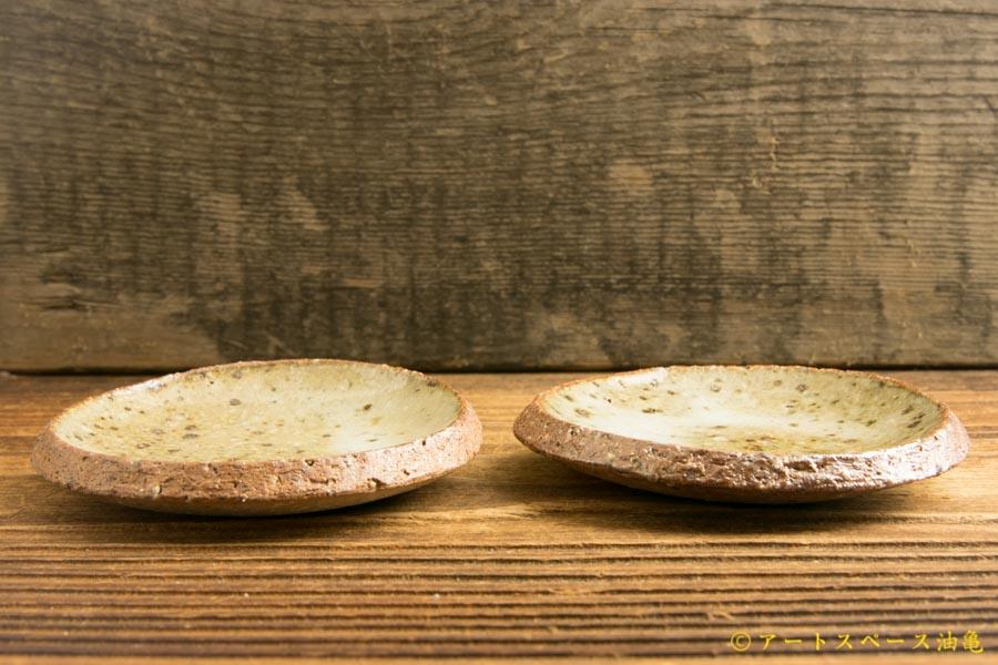 画像2: 寺村光輔「藁灰釉 3寸丸皿(薪)」
