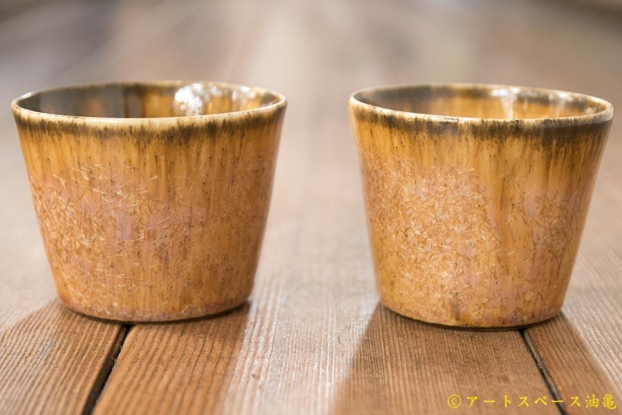画像1: 内村宇博 きったちカップ
