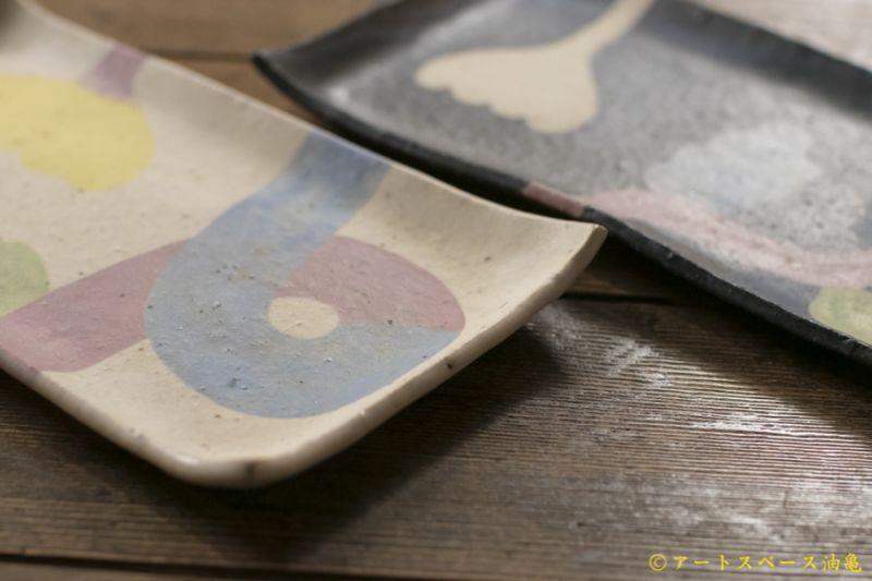 画像3: 馬川祐輔 長角皿(植物模様)