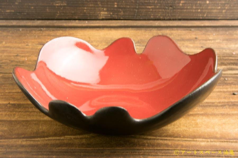 画像3: 柳忠義「ふちなみなみ カレー鉢」